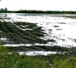 Károkat okozott a májusi eső