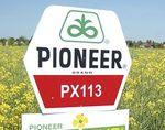 PX113 – Egy átütő ajánlat a Pioneer MAXIMUS® portfólió 10. évfordulójára