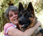 A kutya viselkedésének mélyebb okai