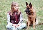 Ember és kutya harmonikus kapcsolata