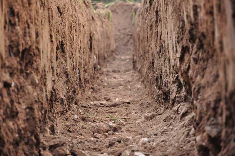 A talaj nagyon fontos a klímaváltozás káros hatásának enyhítésében