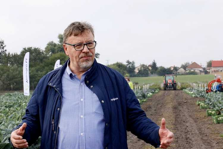 Antal Gyula, zöldségfélék üzletágvezetője (a képre kattintva galériánkat tekintheti meg)