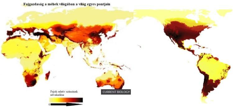 Fajgazdaság a méhek világában a világ egyes pontjain