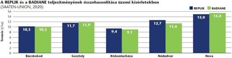 SU_kukorica_portfolio4_Replik_Badiane_grafikon