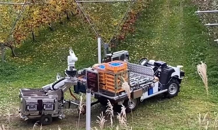 almaszedő robot