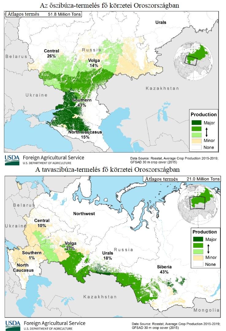 búza termelés Oroszországban