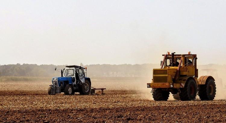 Mezőgazdaság, szántóföldi növénykultúrák