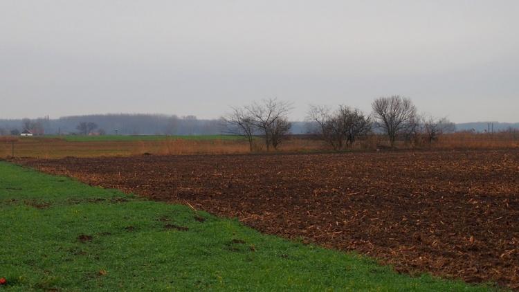 Agrárágazat, fagy, hideg és aszály