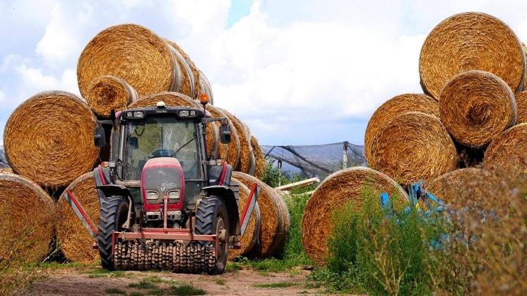 Mezőgazdaság, büntetőeljárás