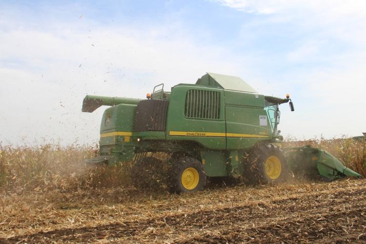 Az USA már behordta a kukorica felét, és olcsón kínálja